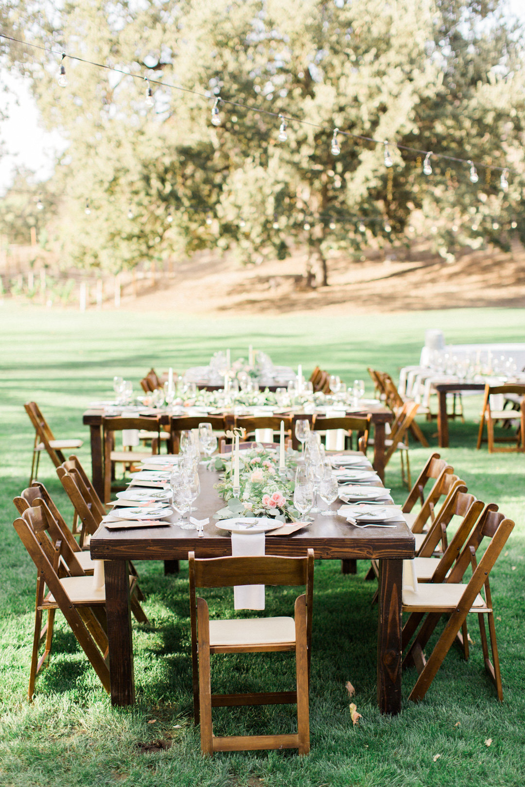 Triunfo Creek Vineyard Wedding-6949