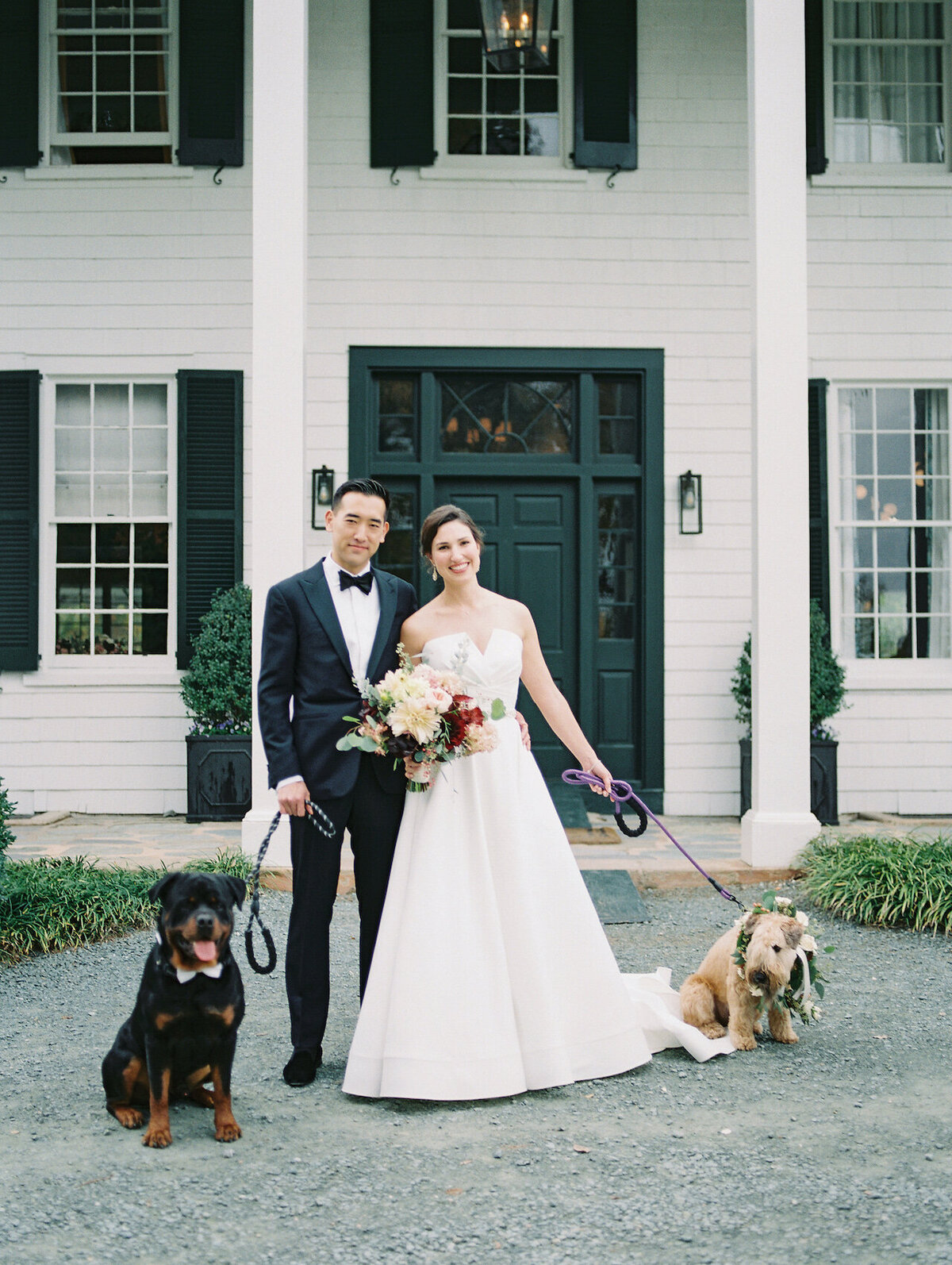 Bride and Groom Portraits with Dogs Robert Aveau for © Bonnie Sen Photography