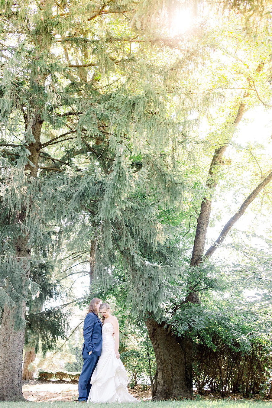 Husband and wife under evergreen trees