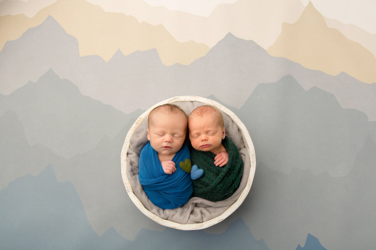 newborn twin boys swaddled together in a white bowl against a mountain background
