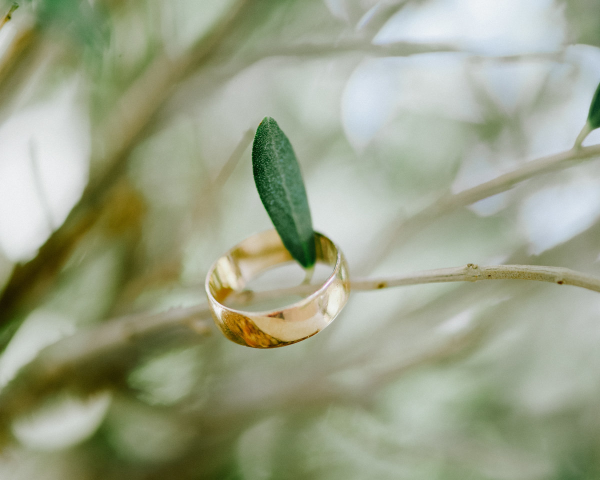 mens wedding ring n an olive tree