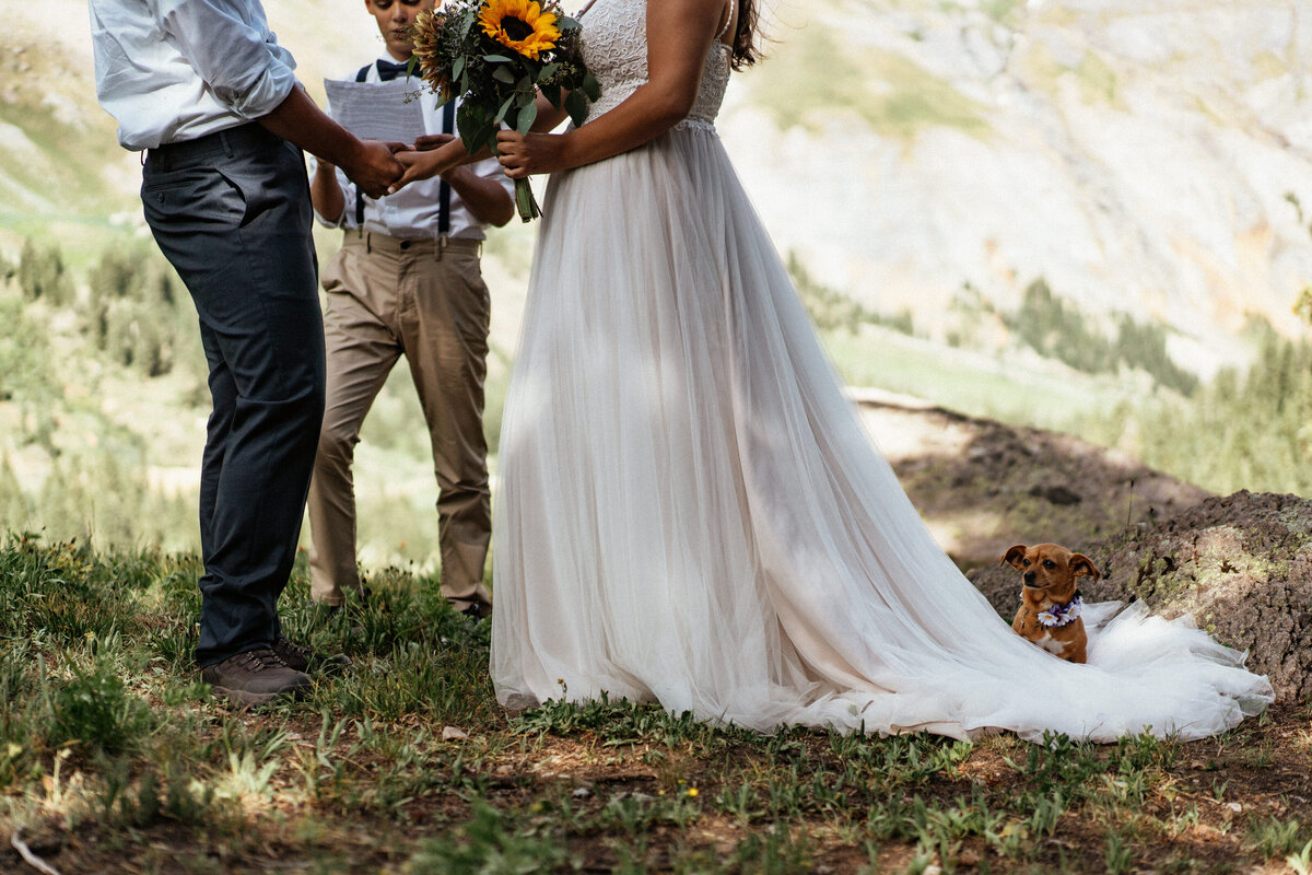 colorado-elopement-with-dog