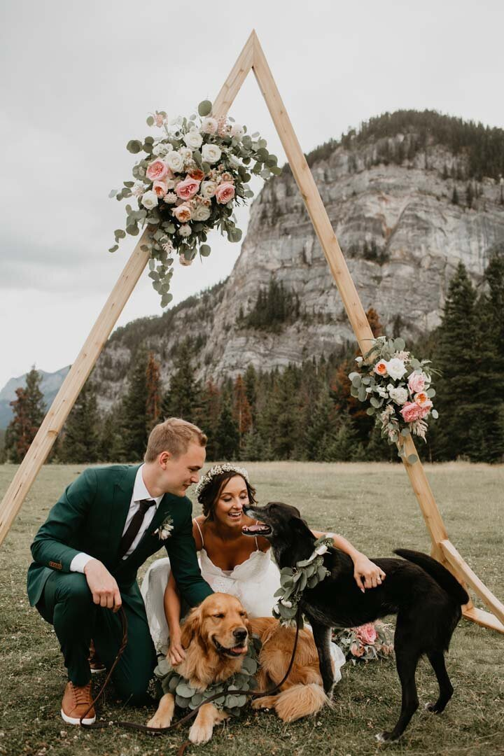 Tunnel Mountain Meadow Banff Elopement350