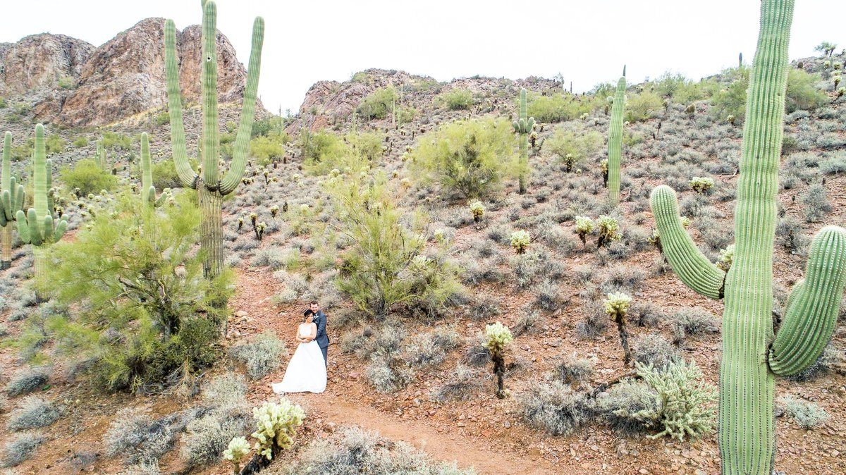 Drone desert gold canyon bride and groom