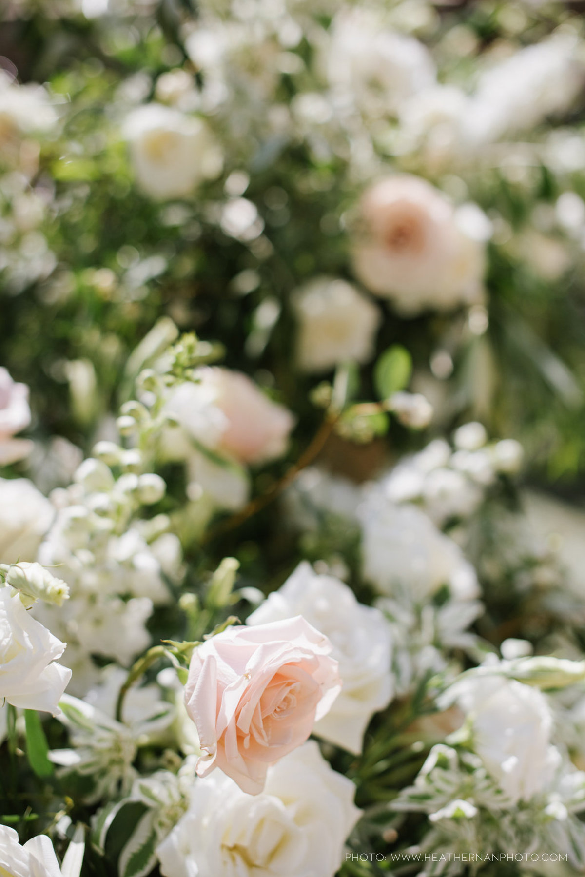 Utah Florist_Summer Weddings in Park City_Romantic Wedding_Luxe Mountain Weddings_Stein Eriksen Lodge Weddings_Artisan Bloom-1425