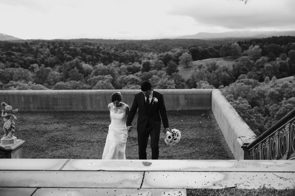 Biltmore Estate Wedding Asheville Nc - 209