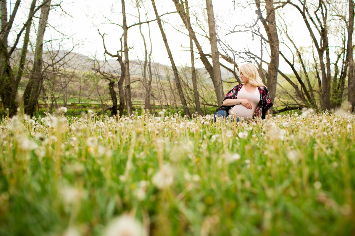 fort-collins-maternity-photography