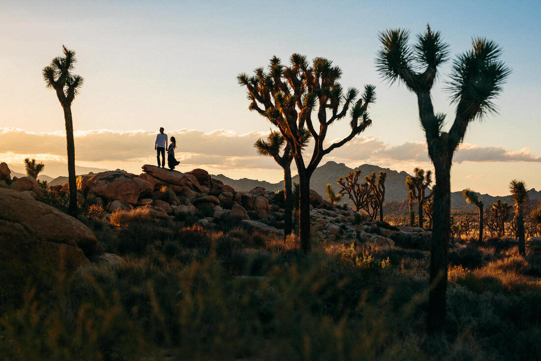 Couple poses on a rock for a silhouette photo during their engagement shoot in Joshua Tree National Park.