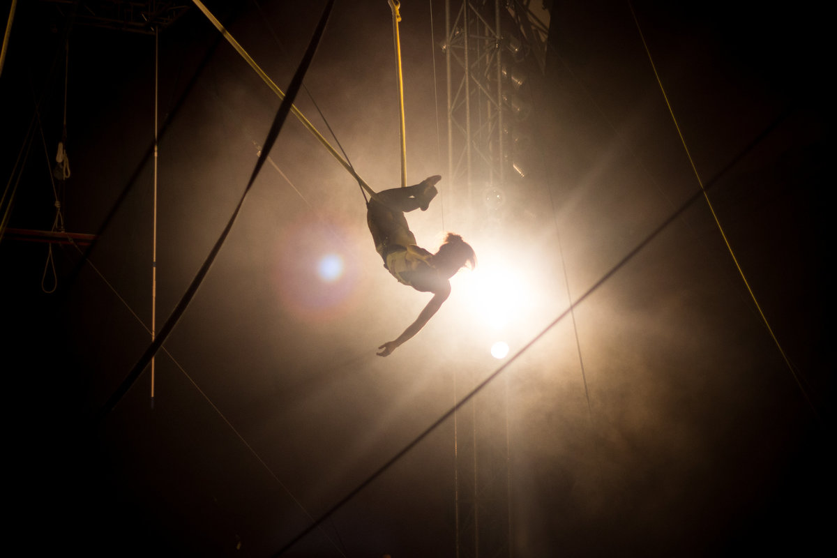 Florida_Circus_Photographer