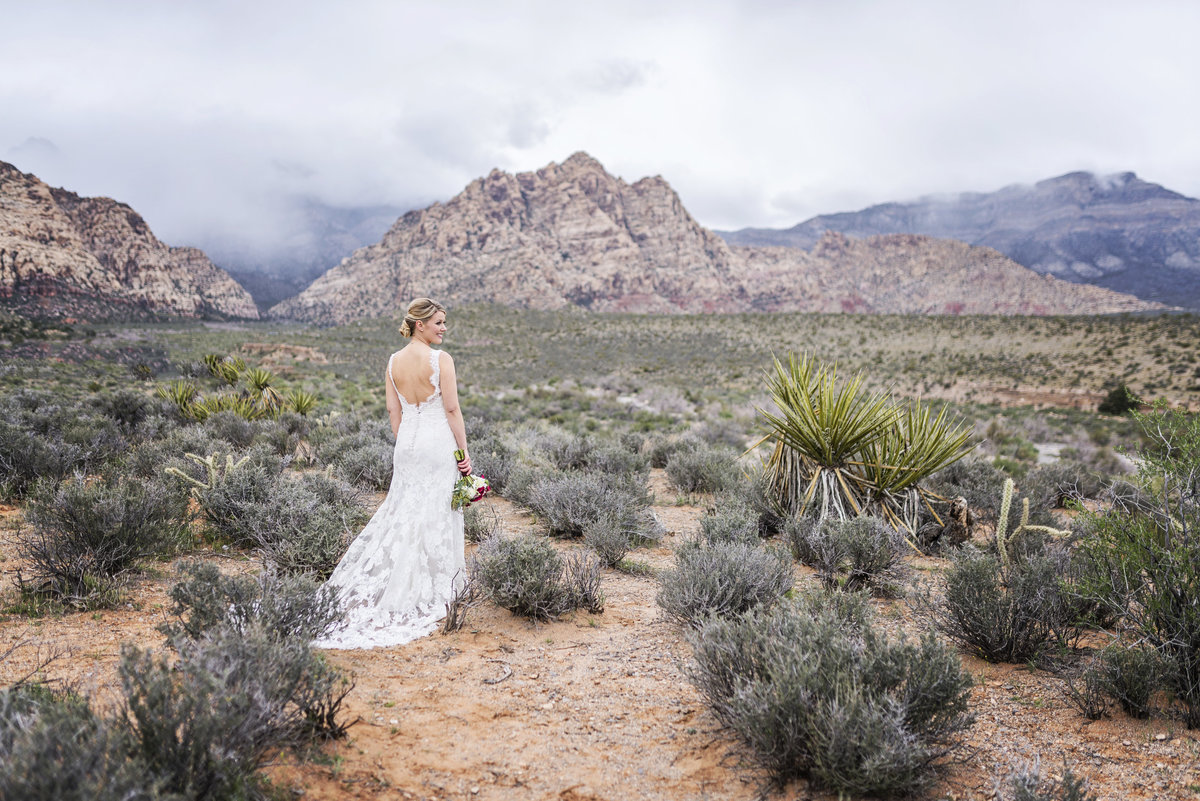 Bride with the mountains in the background