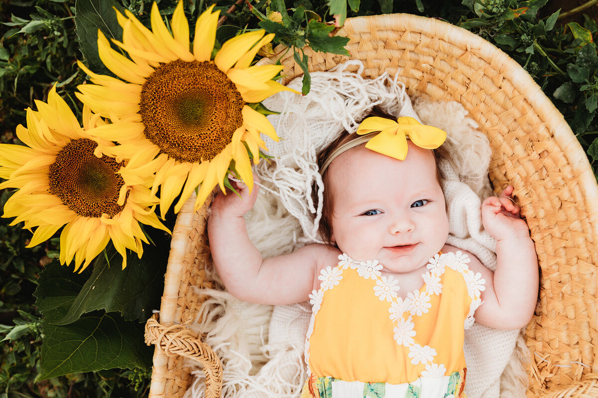 sunflower+baby+portrait+photographer+in+boise+id+_+valerie+clement+photography+_+maternity+_+family+_+baby+_+child+_+photography+studio+_+outdoor+photo+session+boise+idaho