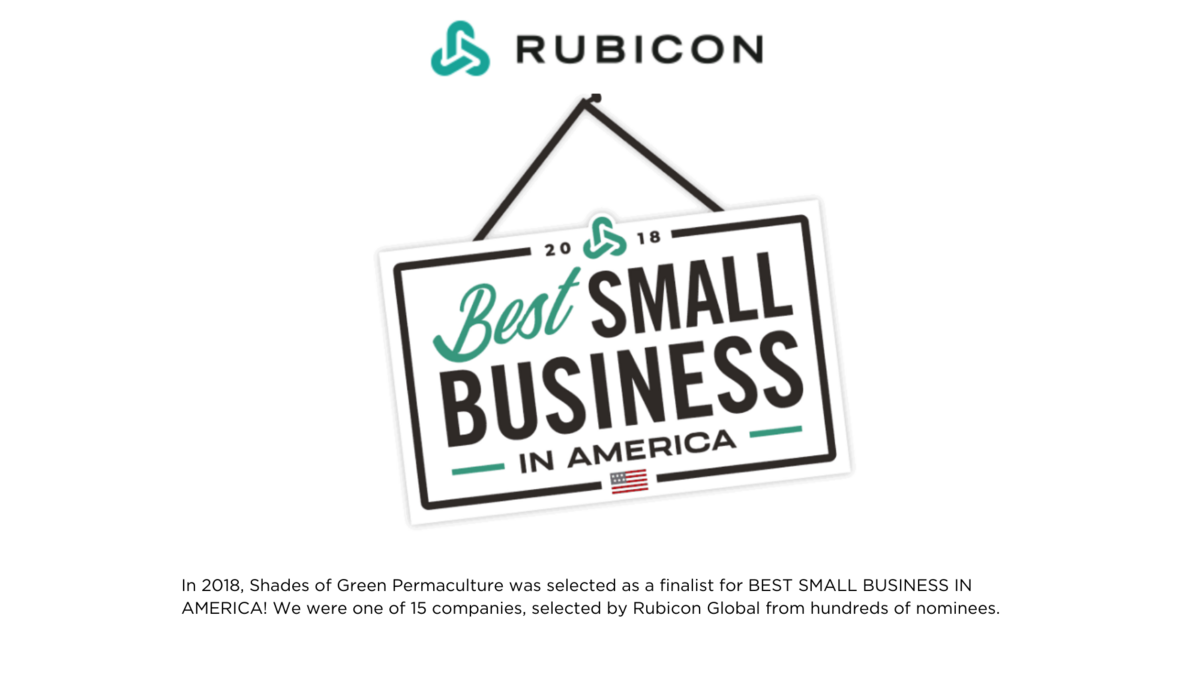 rubicon small business
