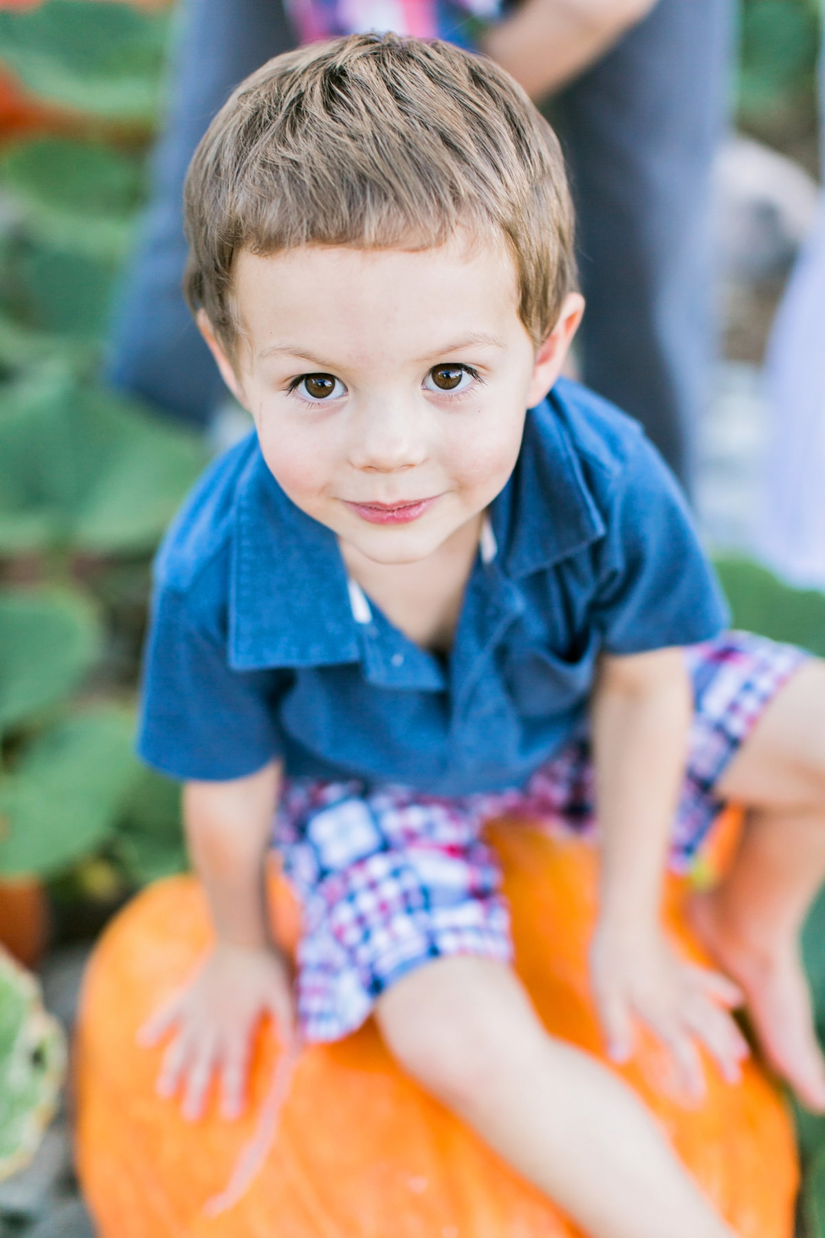 GeorgievFamilySession2016-51