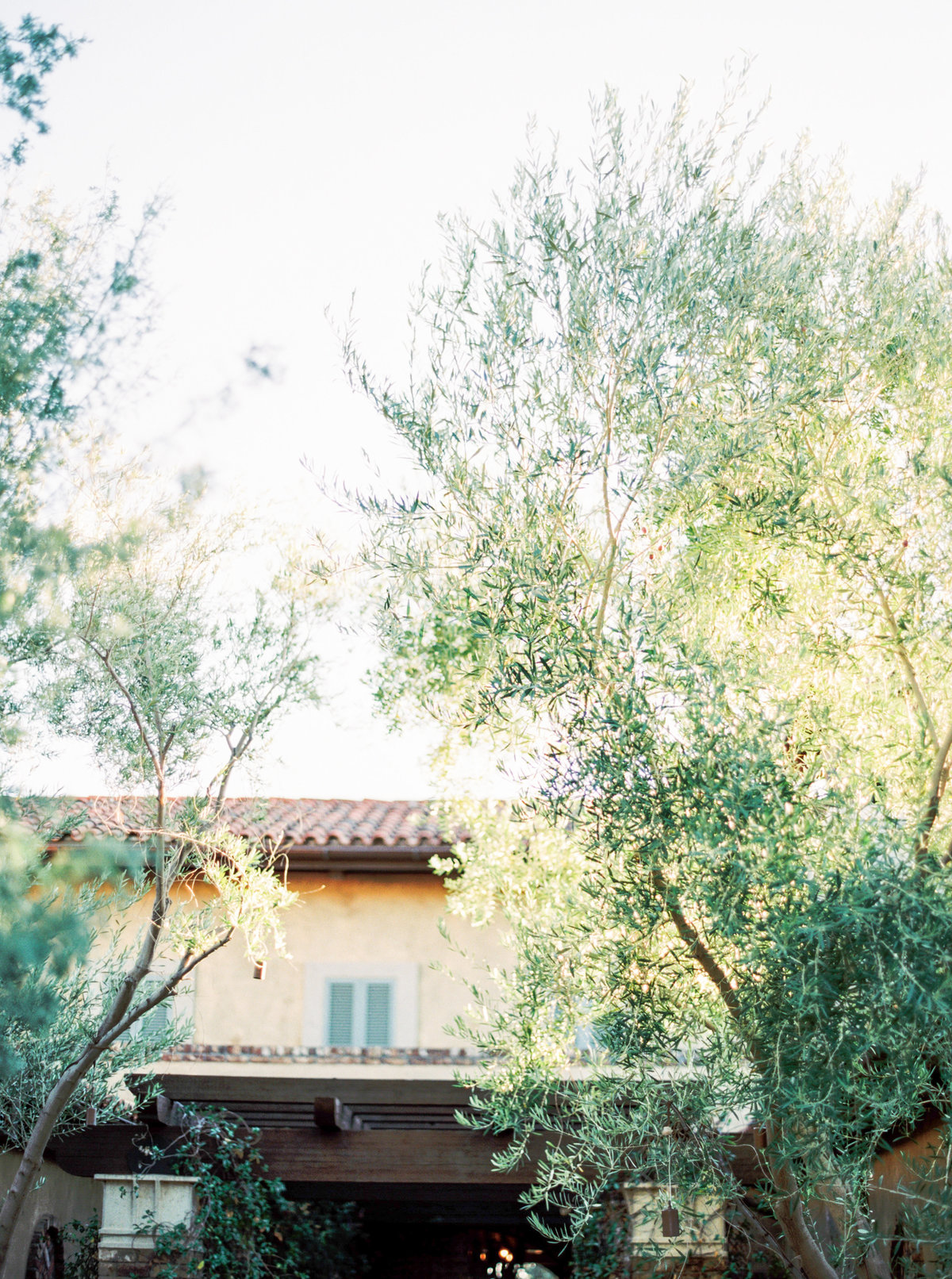 Sassi Scottsdale Arizona Wedding - Mary Claire Photography-4