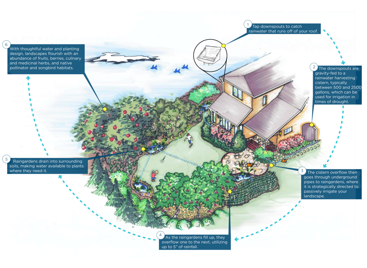 permaculture system