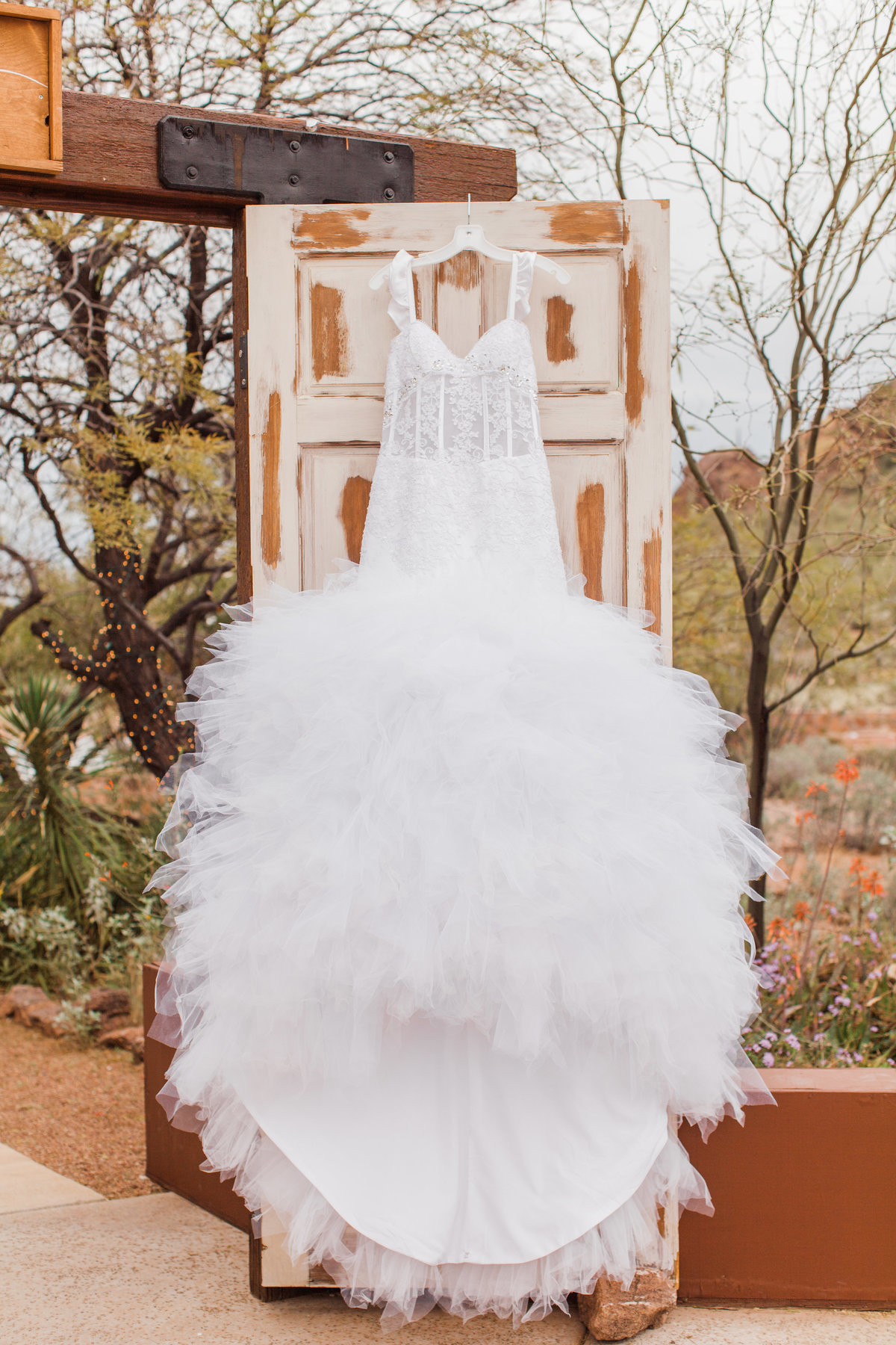 Stardance Tucson Wedding-5702