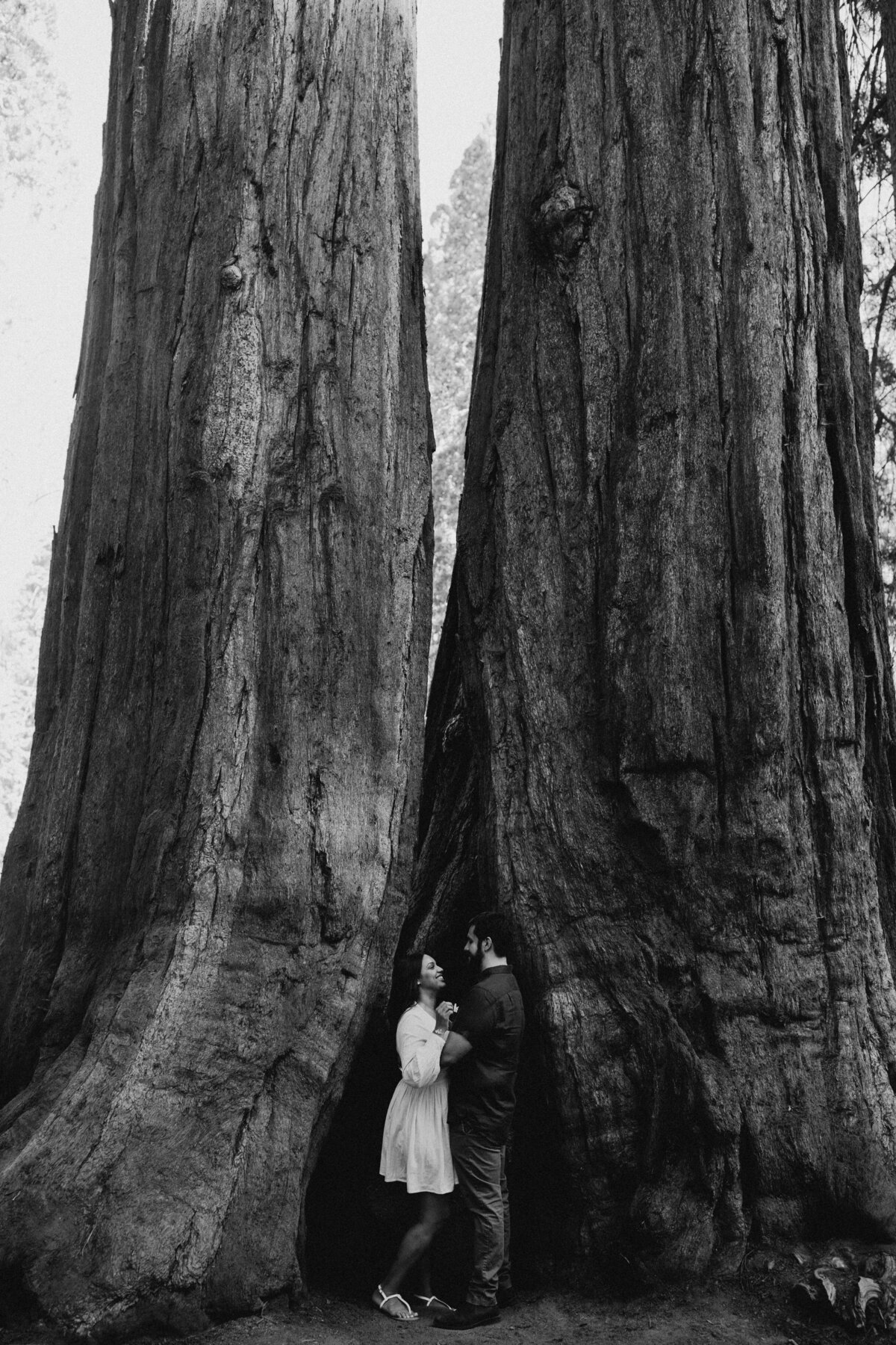 Sequoia-National-Park-elopement-packages-Y&B-49
