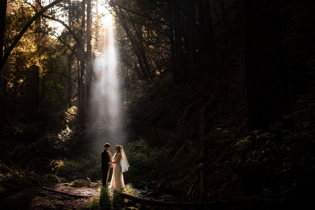 Bride and groom at Saratoga California forest wedding