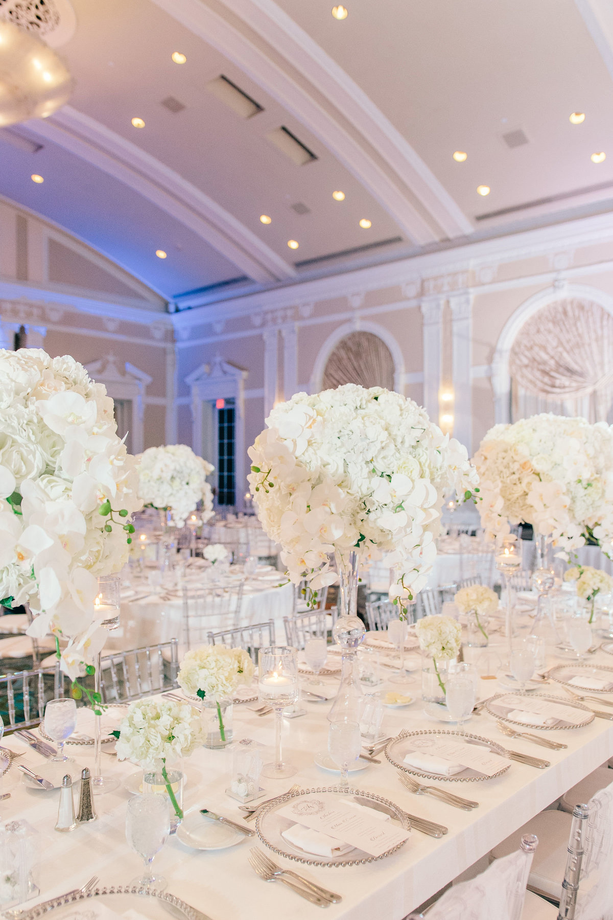 reception room decorated with orchid flowers centerpieces
