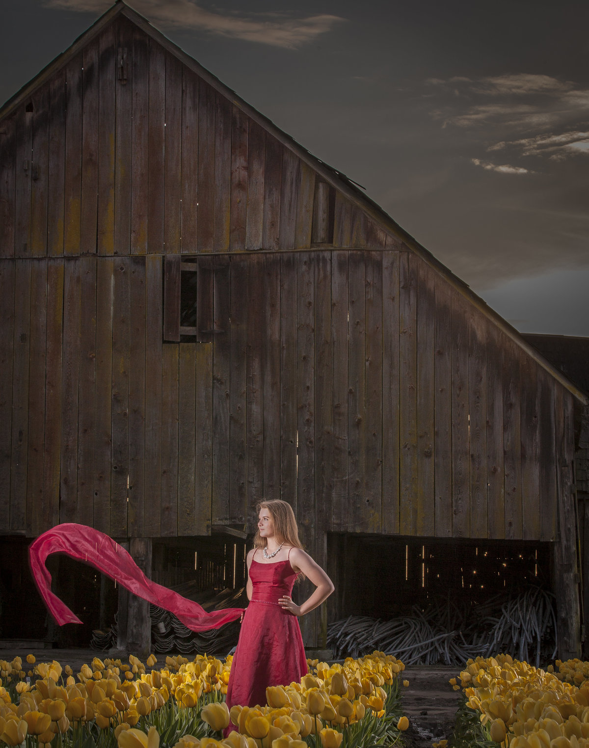 bellingham photographers skagit valley tulips senior portrait
