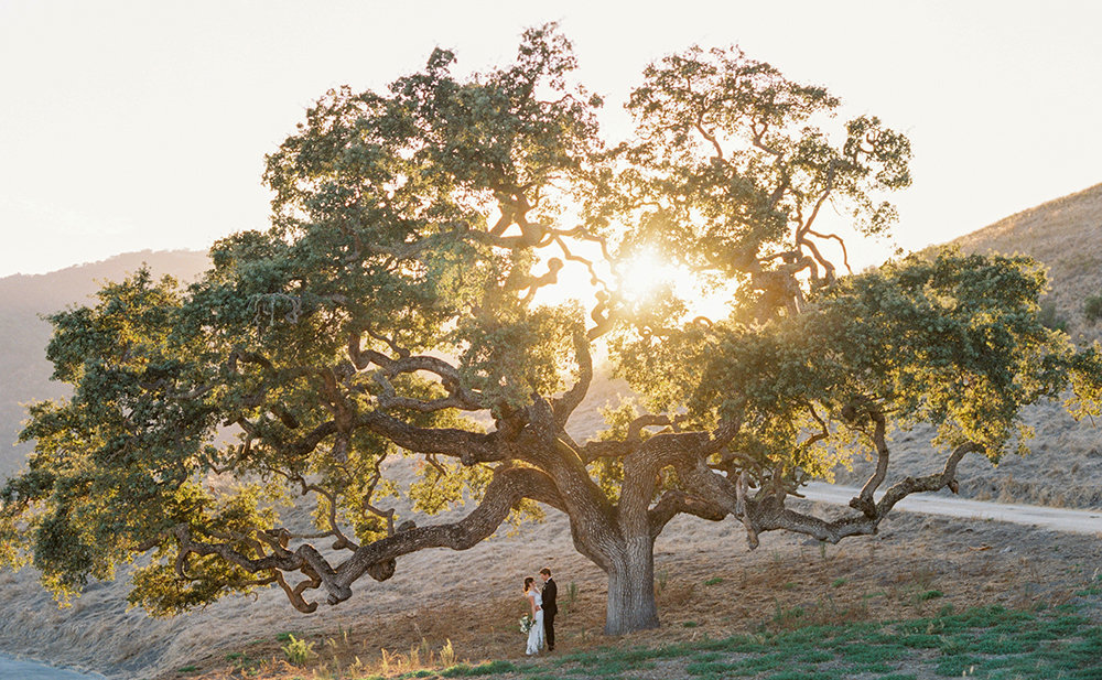 Katie + Jordan Carmel Valley Holman Ranch Wedding Sneak Peeks - Cassie Valente Photography 0010