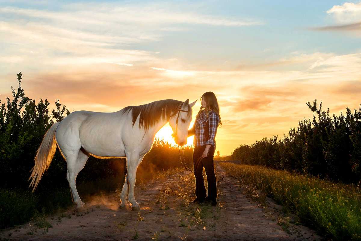 senior with white horse