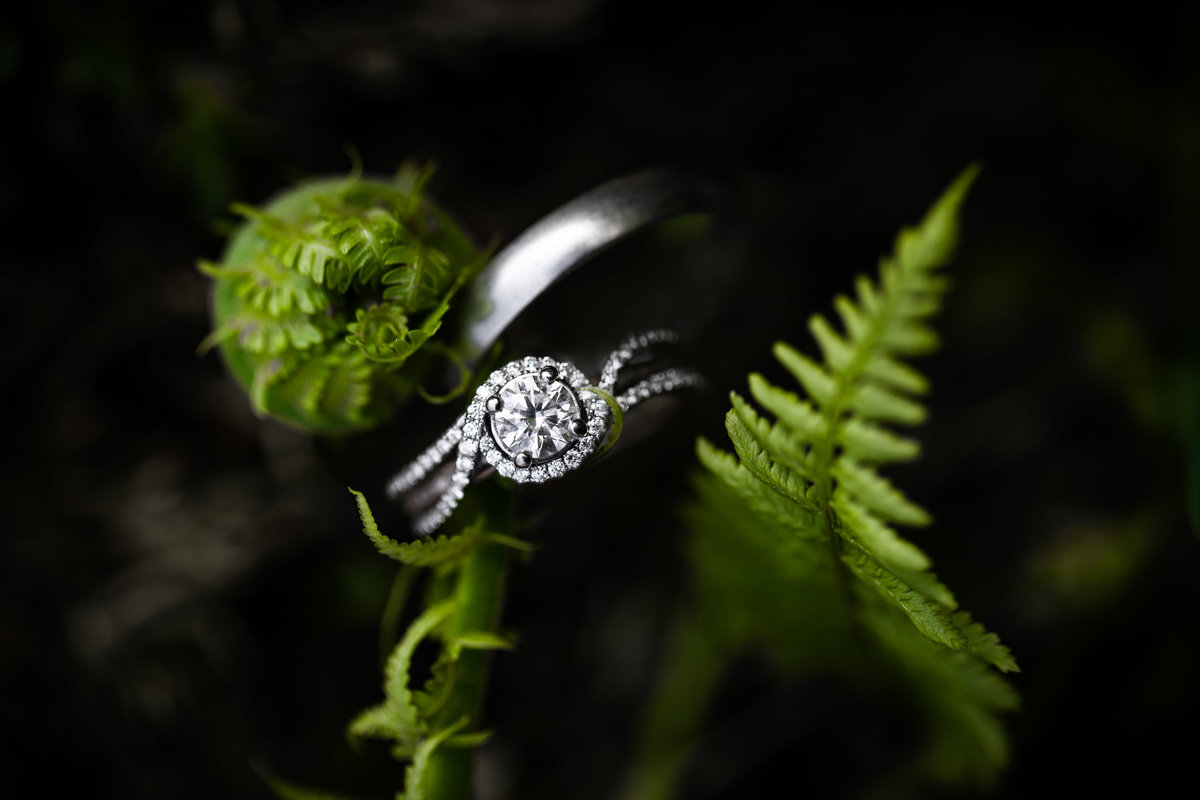 Wedding_Rings_Ferns__Photography_Spring_Styled_Product_Photography_Jena_Carlin_Croi_Midwest_Wedding_ photographer_W