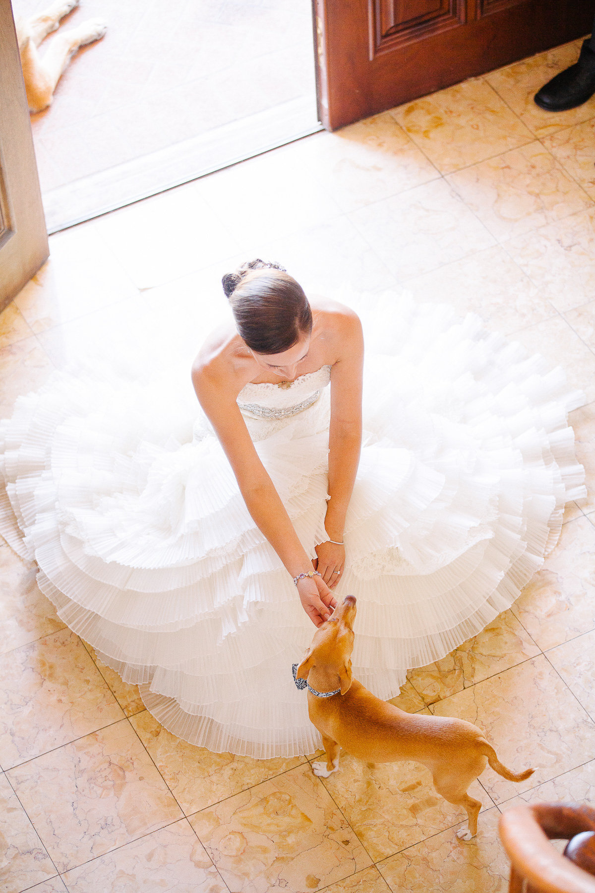 Bride with her dog.