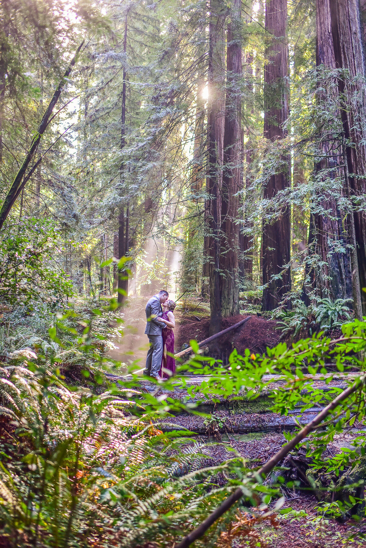 Redway-California-elopement-photographer-Parky's-Pics-Photography-redwoods-elopement-Avenue-of-the-Giants-Phillipsville-California-03.jpg