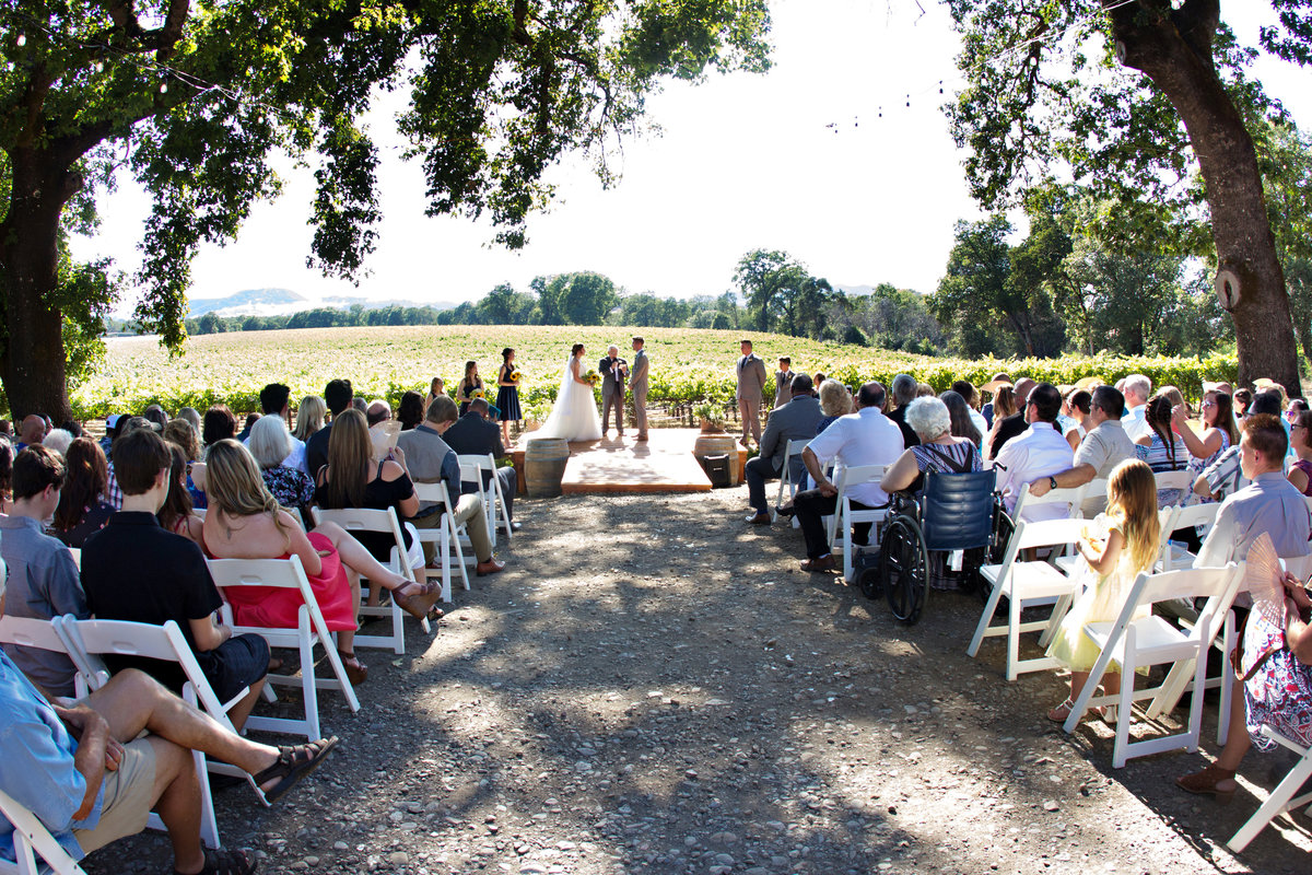 wine country ceremony, wedding ceremony, vineyard ceremony