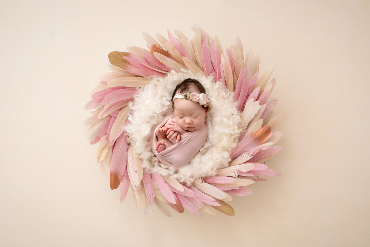 Baby girl in a nest with pink feathers