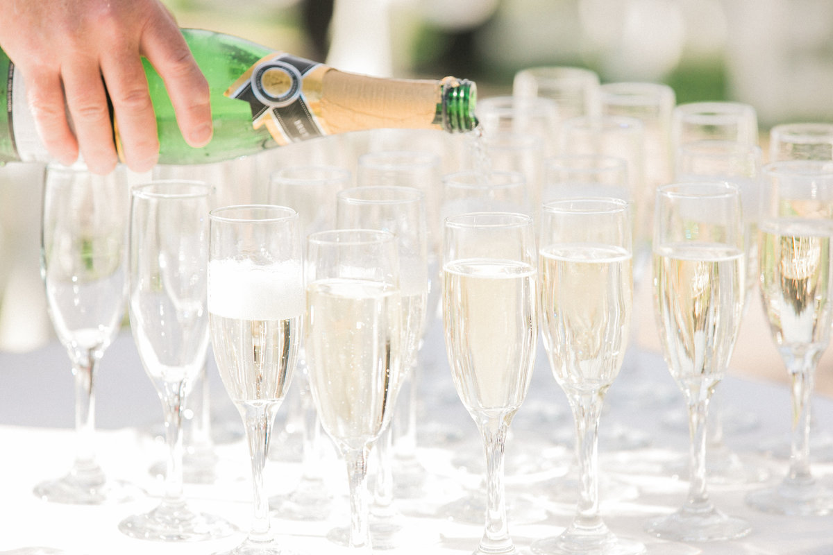 Champagne Wedding Reception