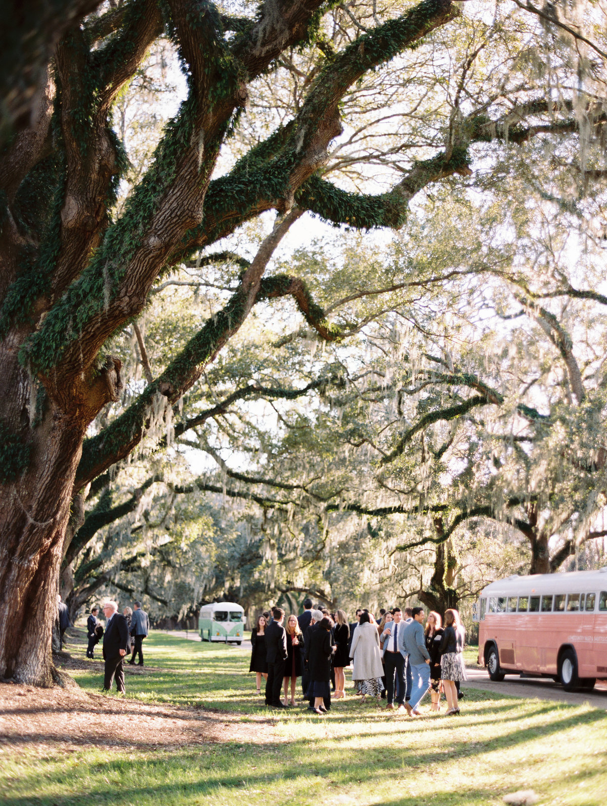 boone-hall-plantation-wedding-charleston-philip-casey-11