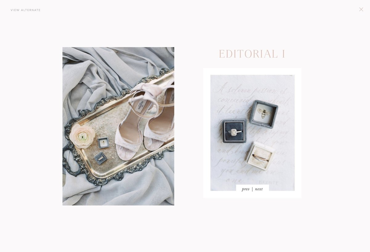 Rose Editorial Gallery