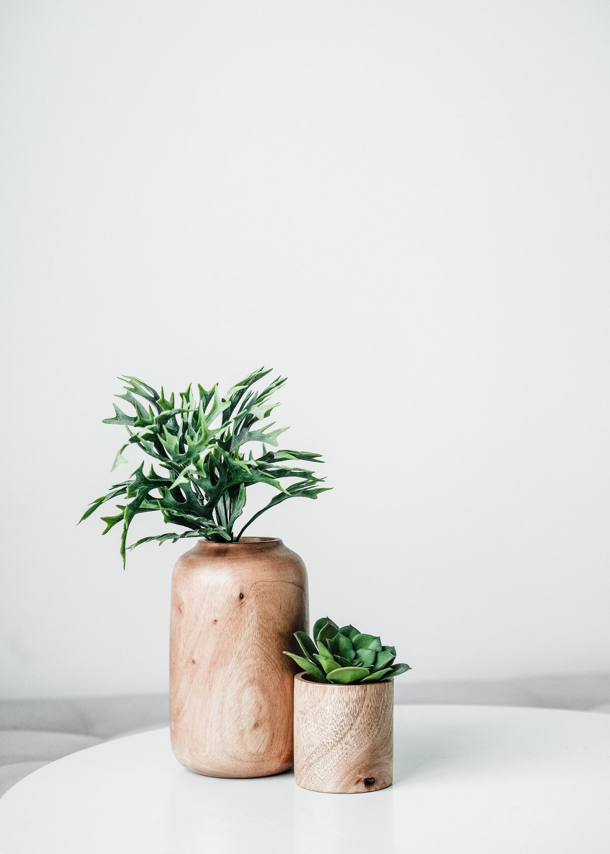 Two wooden plant pots hold succulents against a white wall. Scandi interior decor details.