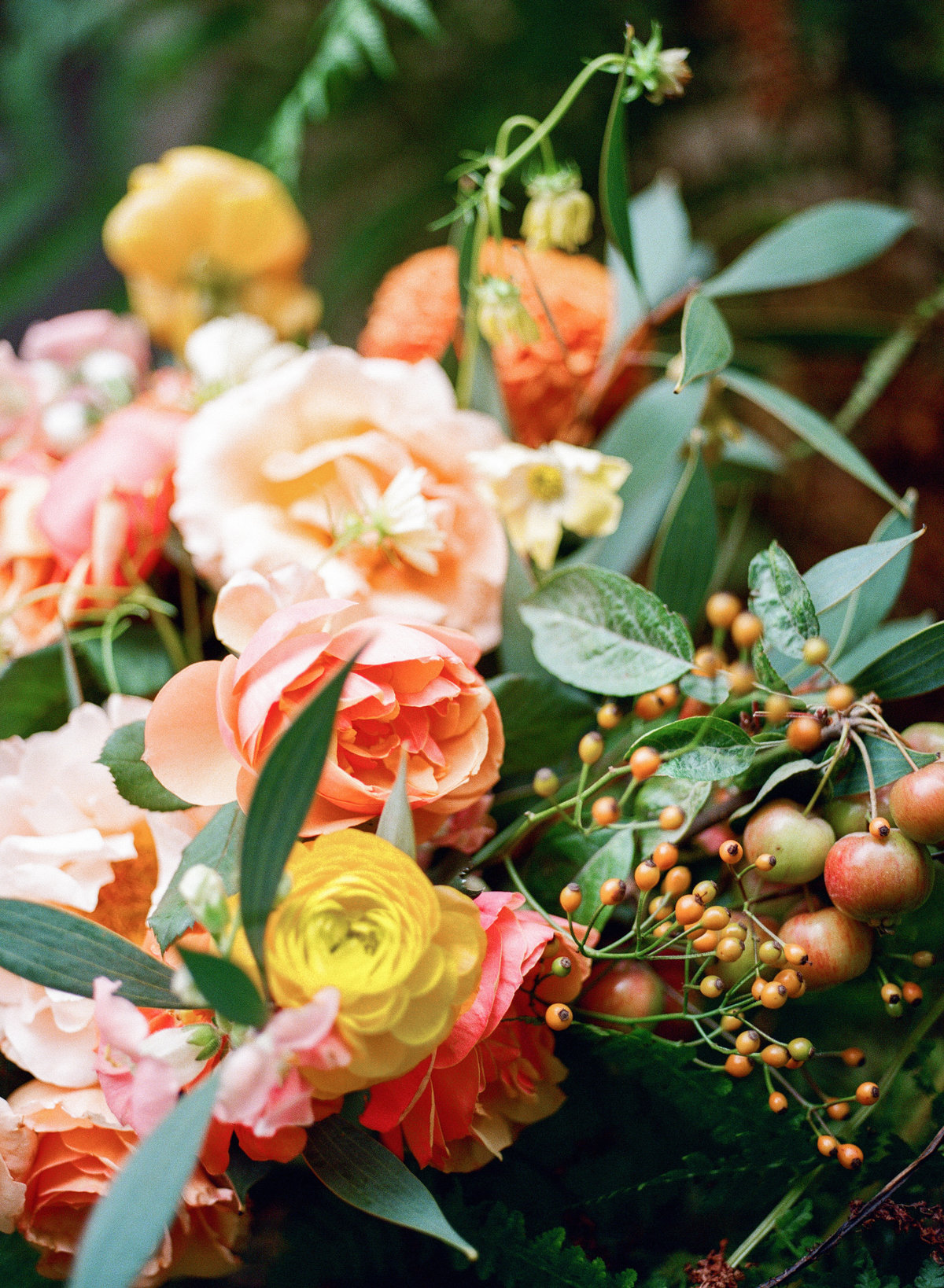 film photography of peach and yellow floral