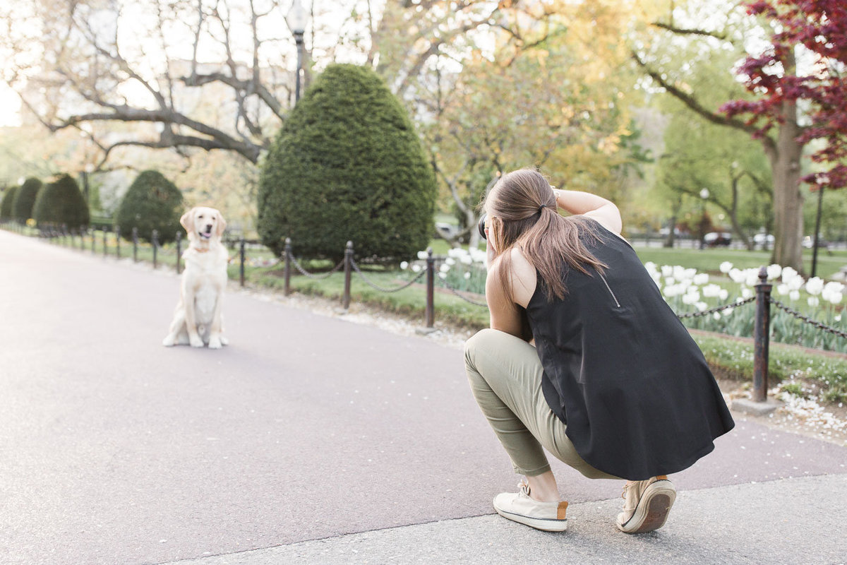 photographer taking photo of dog