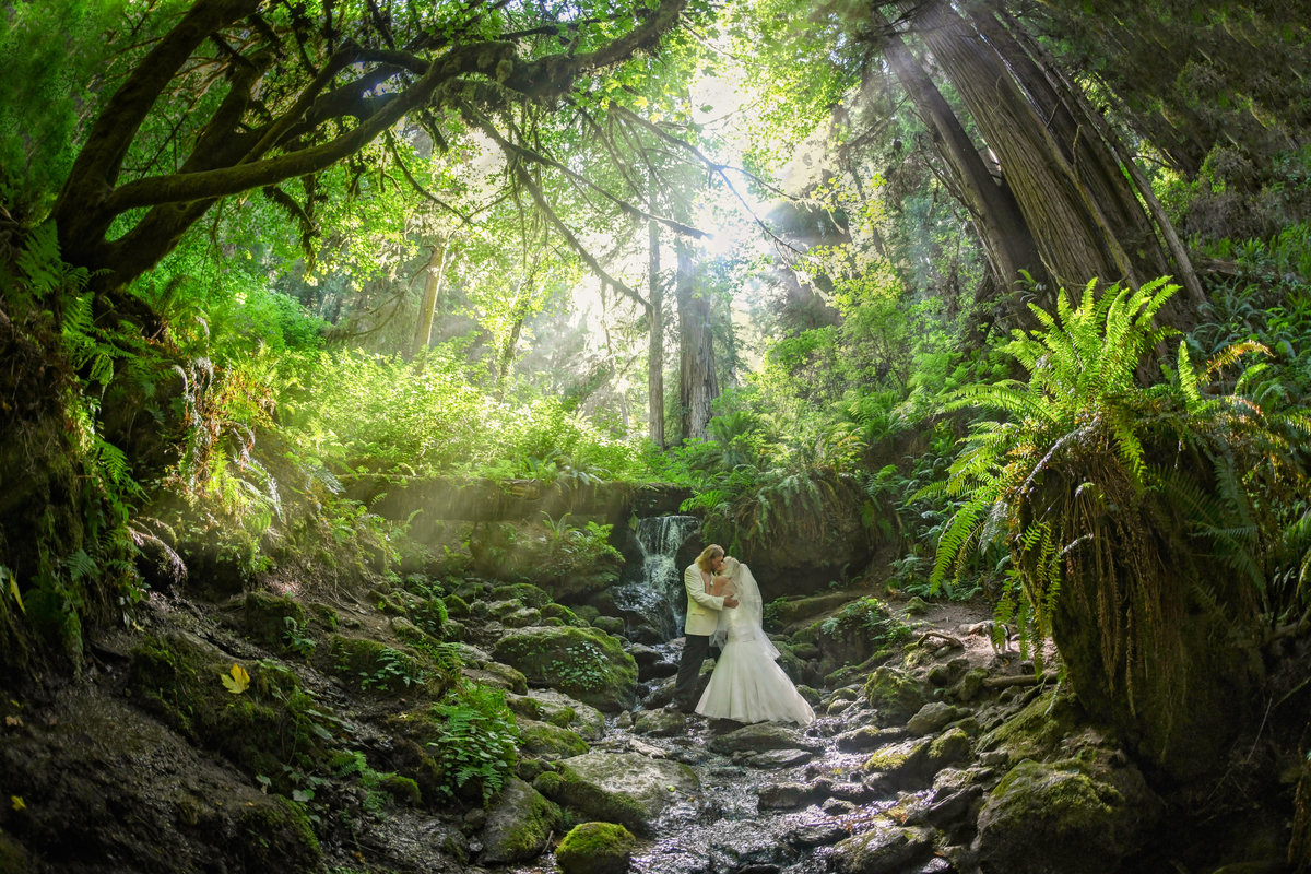 Redway-California-elopement-photographer-Parky's-Pics-Photography-redwoods--adventure-elopement-Redwood-National-Park-Orick-California-4.jpg