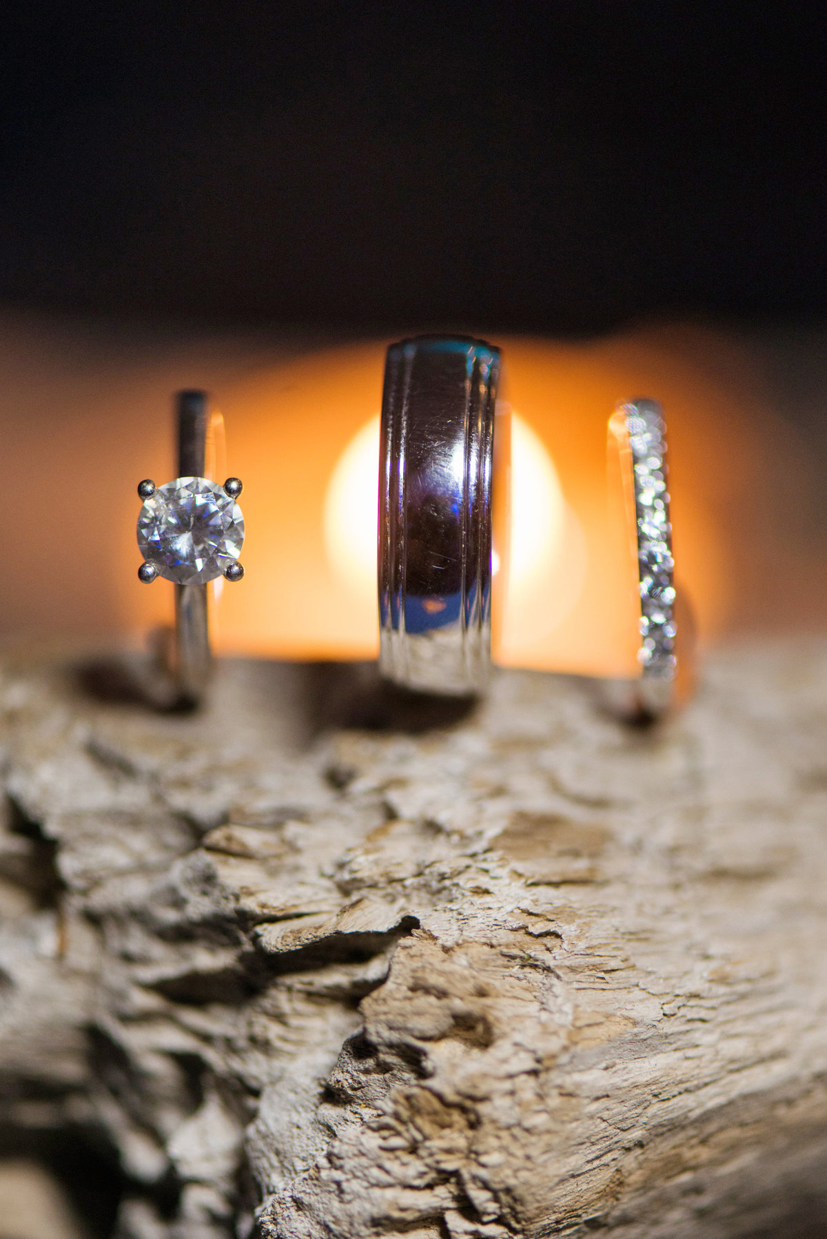 photo of wedding rings on log from wedding at Pavilion at Sunken Meadow