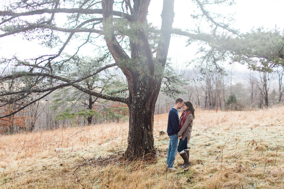 Southwest Virginia Engagement Session