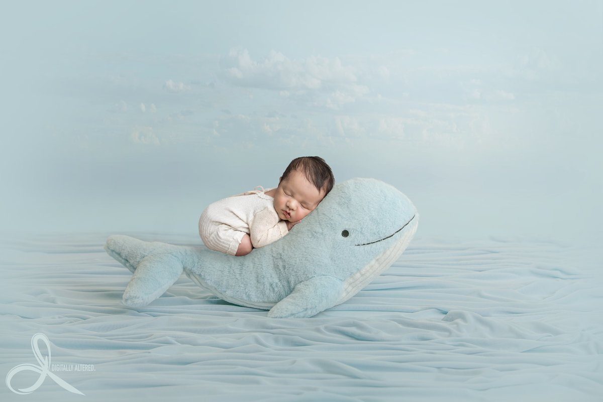 Little boy sleeping on a stuffed whale