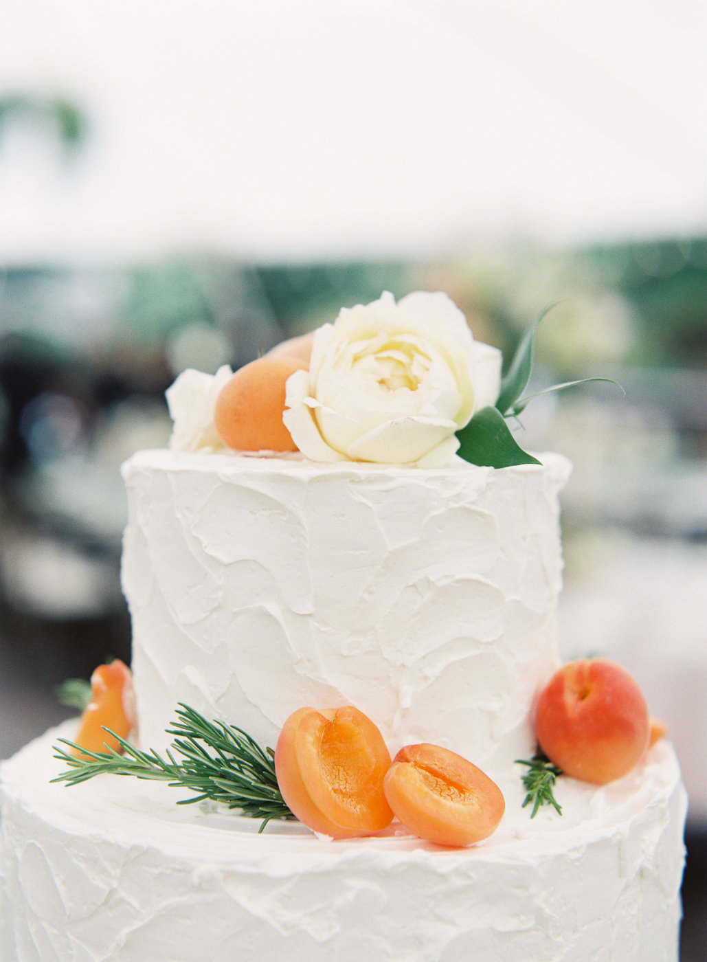 Beautiful cake decorated with apricots and rosemary sprigs  are beautiful touches at this luxury Italian wedding.