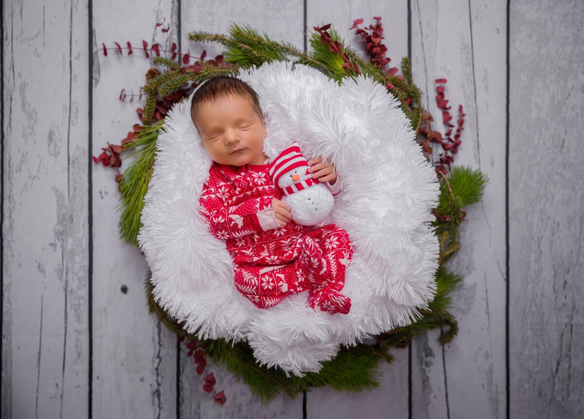 Posed studio newborn session in Phoenixville with Christmas theme