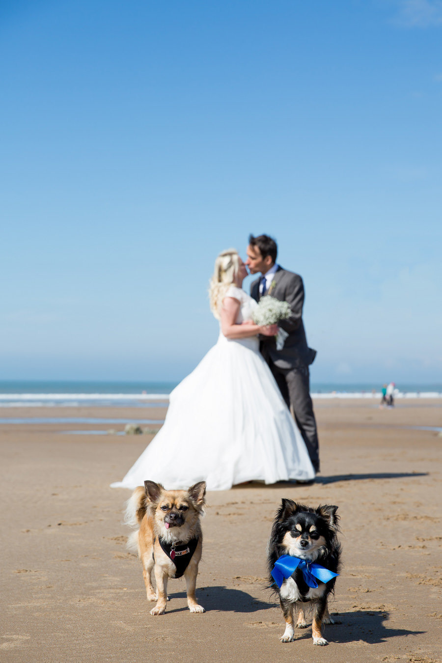 Couple on the beach with their dogs at Woolacombe Bay Hotel Devon