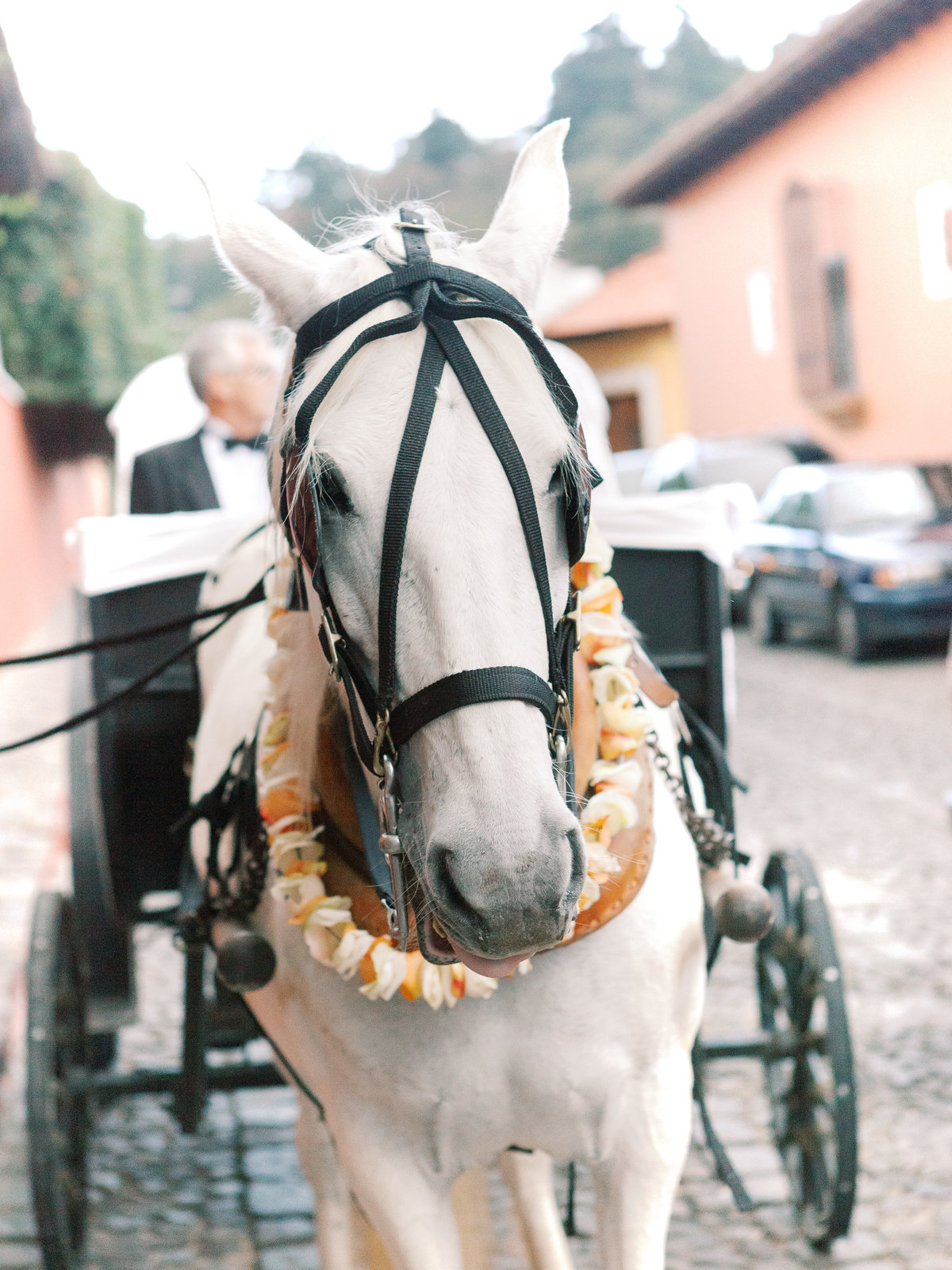 Destination Wedding Antigua Guatemala-1025