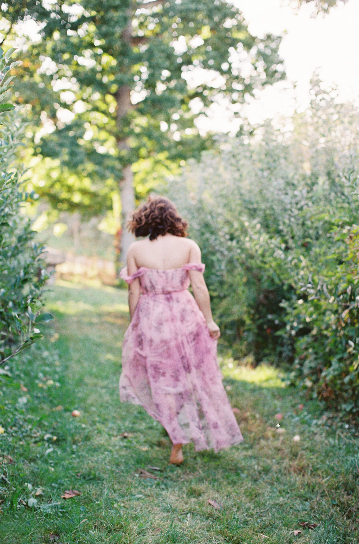 Portrait of a woman walking in an apple orchard dark hair pink gauzy dress Marchesa Notte Soergel's Orchard  | Pittsburgh Wedding Photographer | Anna Laero