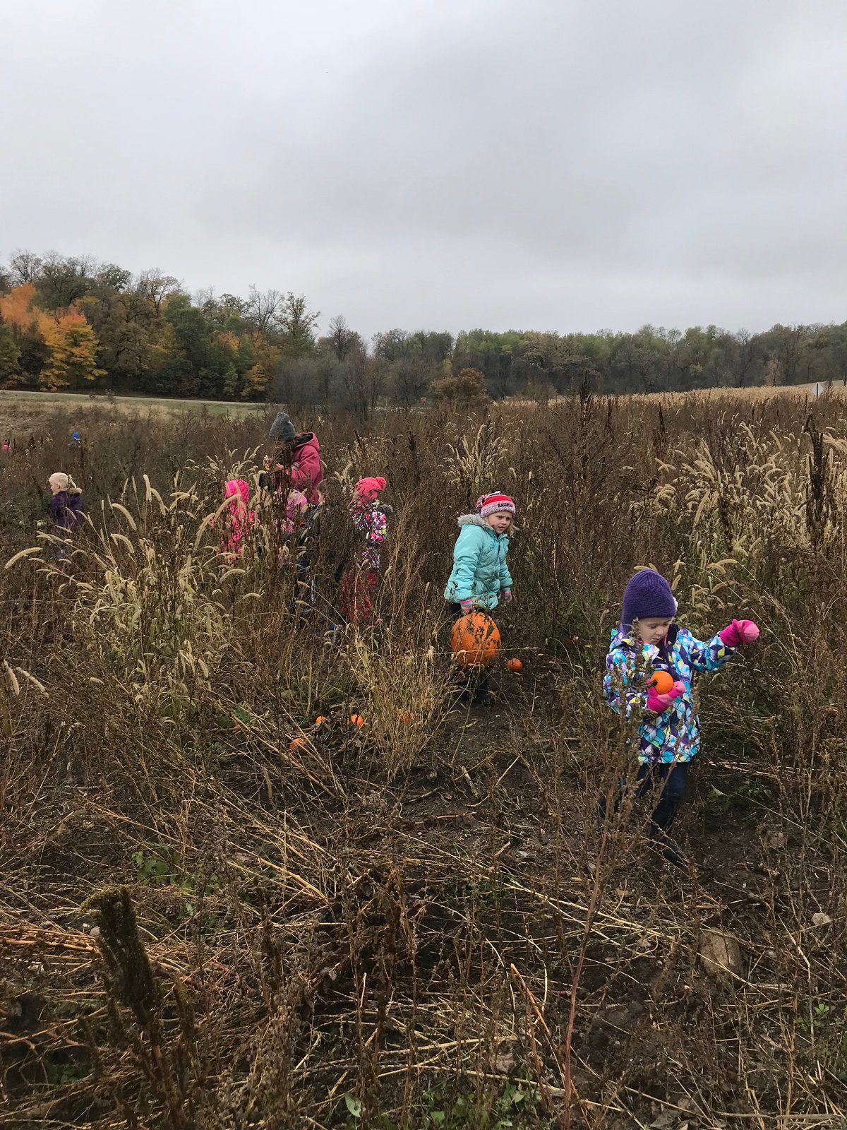 TheasPumpkinPatch2019_13
