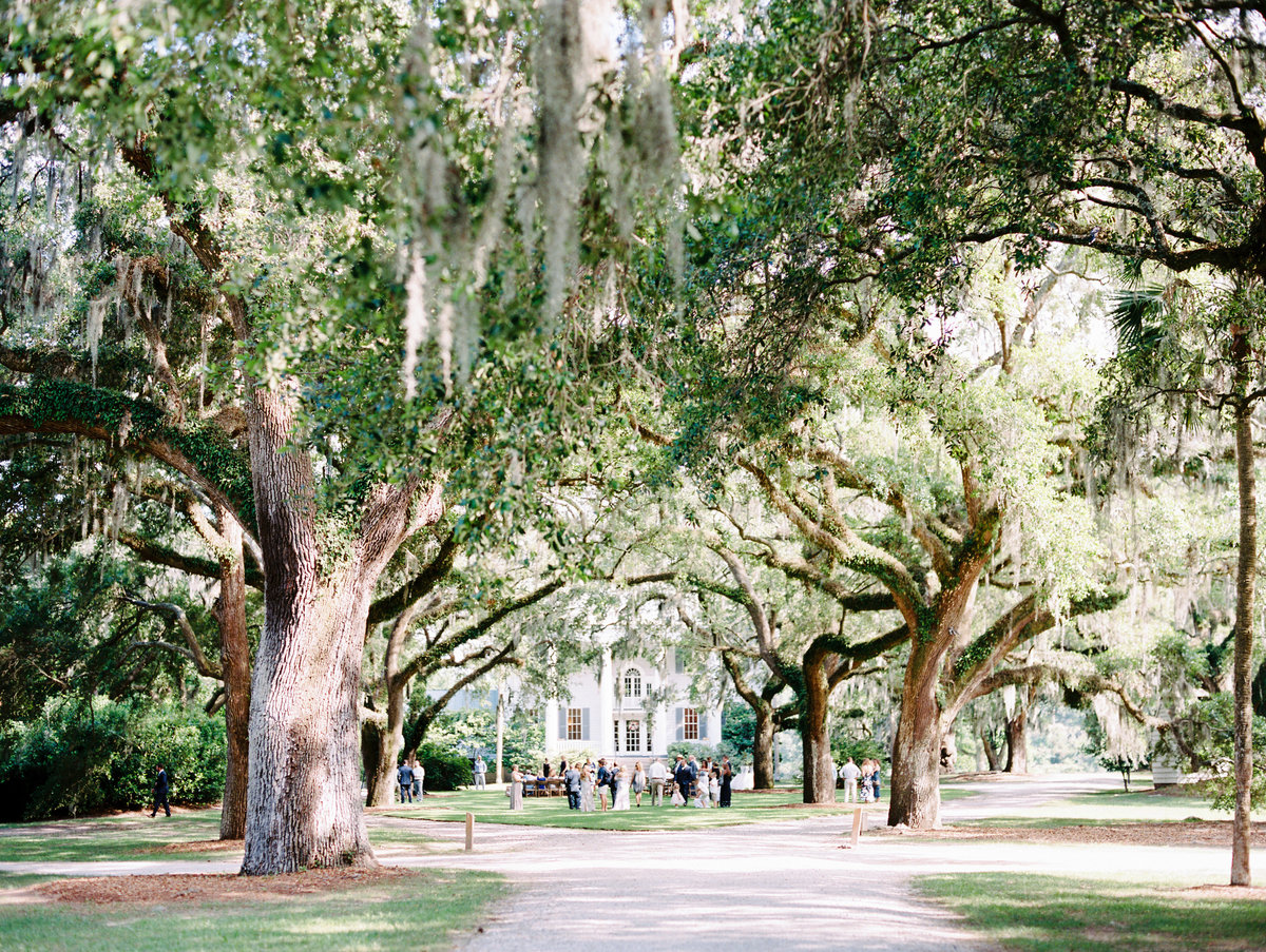 McLeod-Plantation-Charleston-Wedding-23
