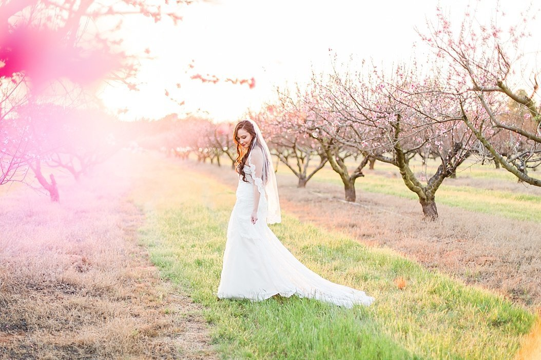Das Peach Haus Bridal Session by Fredericksburg Wedding Photographer Allison Jeffers Wedding Photography_0012