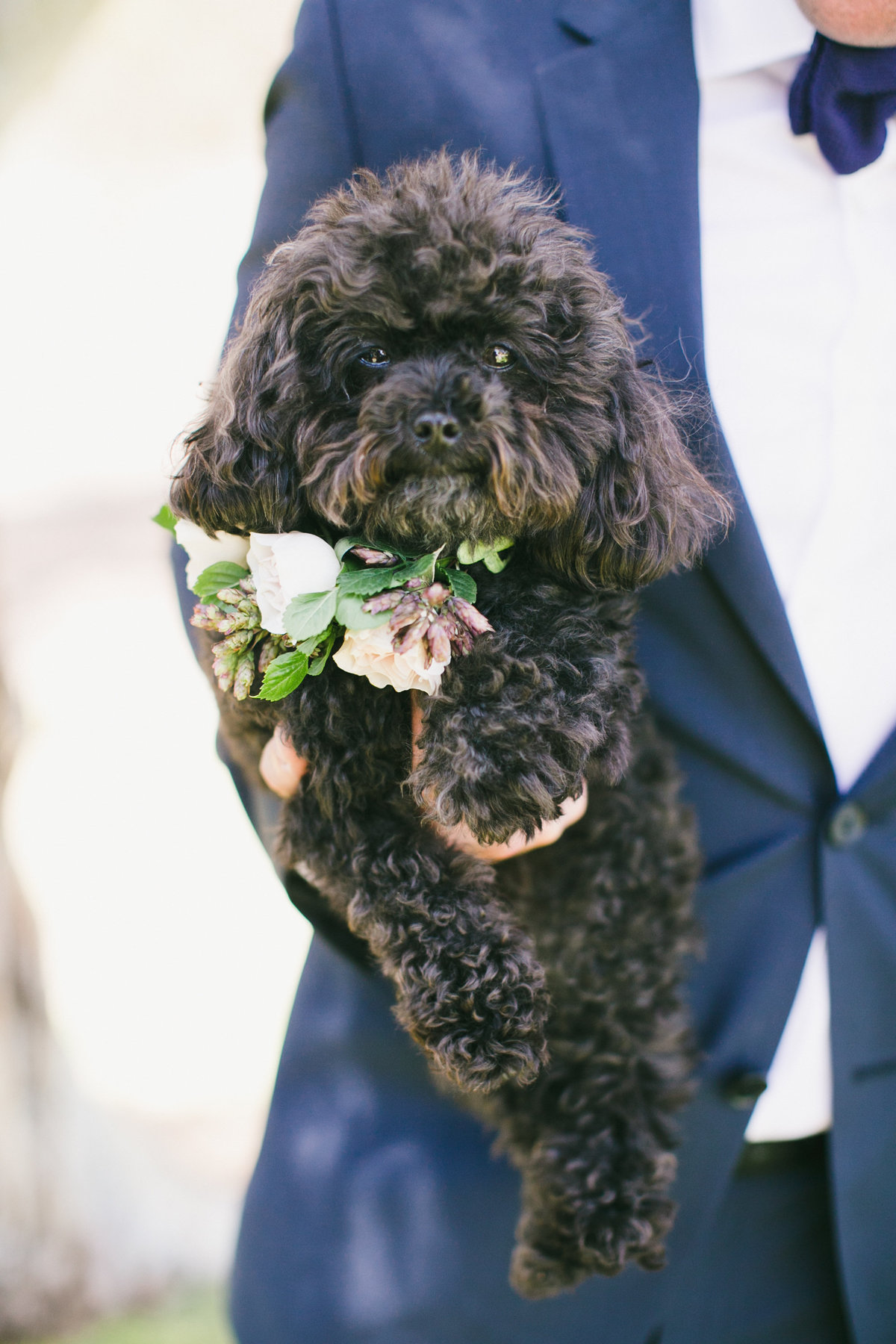 ahmason-ranch-santa-monica-calabasas-california-wedding-photographer-252